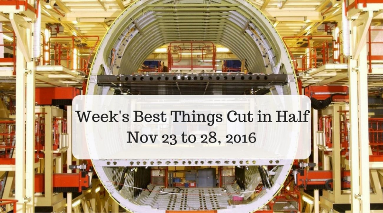 Week's Best Things Cut in Half - Nov 23 to 28, 2016